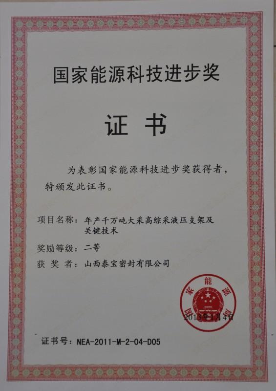 国家能源科技进步奖